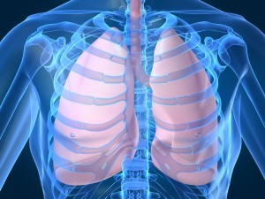 healthy_lungs_herbs-300x225